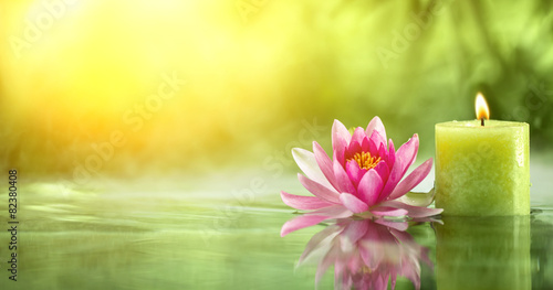Garden Poster Lotus flower Spa