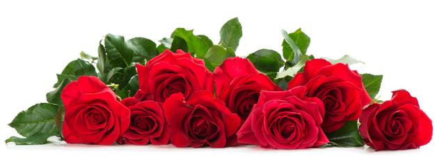 Fototapeta Few red roses