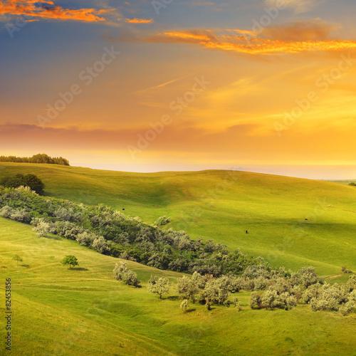 Spoed Fotobehang Rijstvelden scenic fields, hills and sunrise