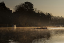 Dawn Rowers On The River Thames