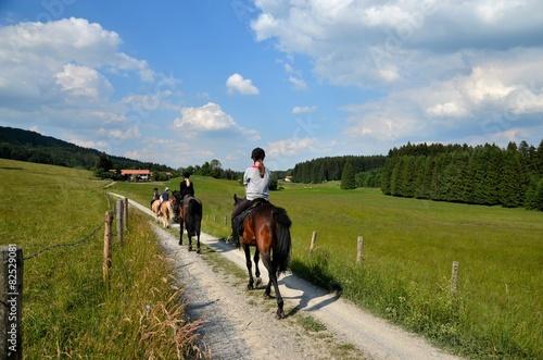 Tuinposter Paardrijden Mädchen und Pferde beim Ausritt in Natur