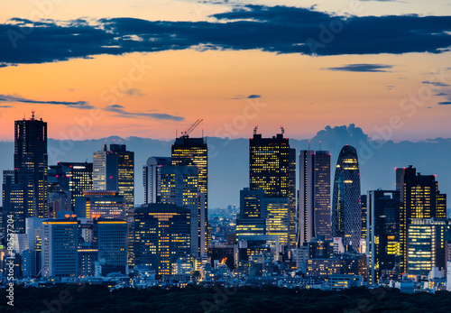 Beautiful Silhouette of Tokyo Skyline at Twilight Poster