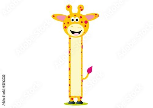 żyrafa,zoo,miarka,zwierzęta,ssak