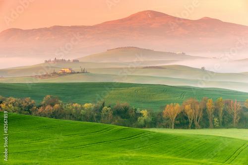 Fototapety, obrazy: Tuscany Landscape