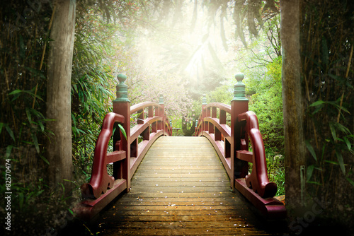 Tuinposter Japan Japanische Brücke