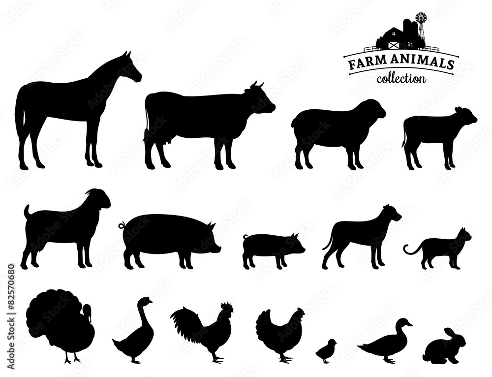 Fototapety, obrazy: Vector Farm Animals Silhouettes Isolated on White