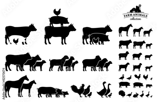 Foto Vector Farm Animals Collection Isolated on White