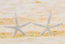 Two Wedding Rings With Two Starfish On A Sandy Tropical Beach. W