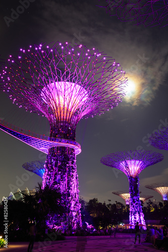 Gardens by the Bay - SuperTree Grove in Singapore Poster