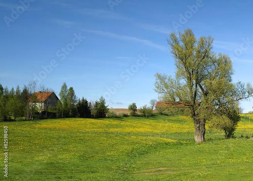 Foto op Plexiglas Weide, Moeras country landscape