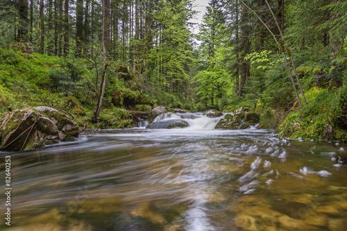 Fototapety, obrazy: Ruisseau de montagne