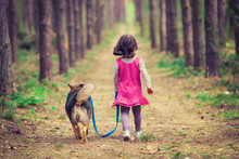 Little Girl Walking With Dog In The Forest Back To Camera