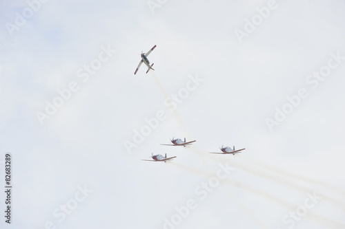 Synchronized flight of 4 planes in the team Canvas Print
