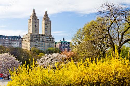 Fototapeta New York City - Central Park Spring Landscape