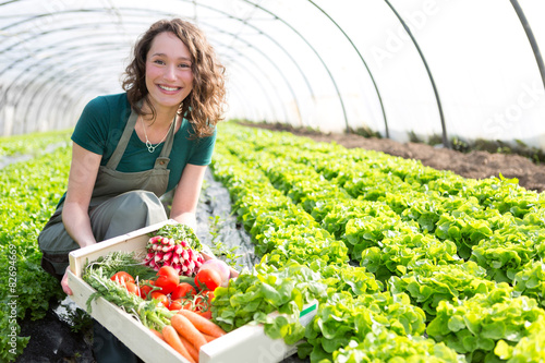 Fotografie, Obraz  Young attractive woman harvesting vegetable in a greenhouse
