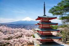 Frühling Und Sakura Bei Der C...