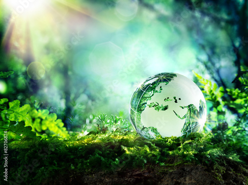 Fotobehang Natuur globe on moss in a forest - Europe - environment concept