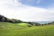 Wiesen in der Südsteiermark