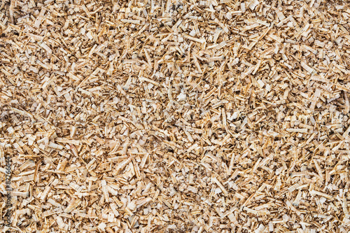 Fotografie, Obraz  Background of wood sawdust