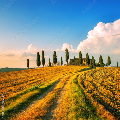 Deurstickers Toscane Tuscany, farmland, cypress trees and white road on sunset. Siena