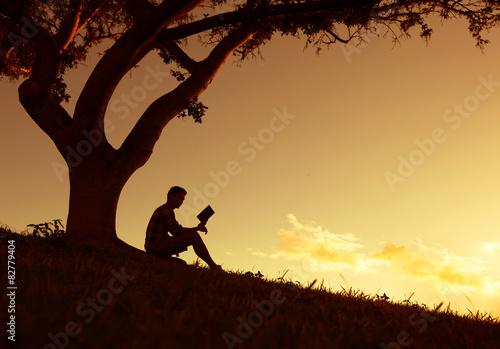 Fotografie, Obraz  Man reading in the park