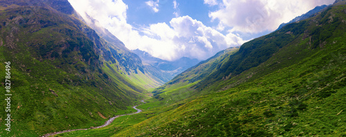 Green Valley in the Alps, Panoramic view #82786496