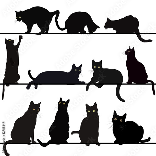 Canvas Print Set of cats silhouettes