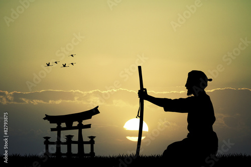 Japanese man with sword at sunset Wallpaper Mural