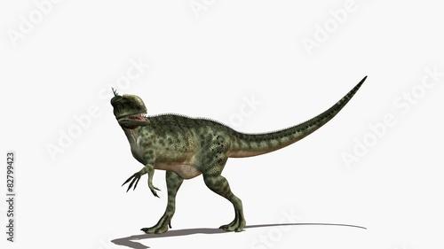 Obraz na plátně  dinosaure monolophosaurus
