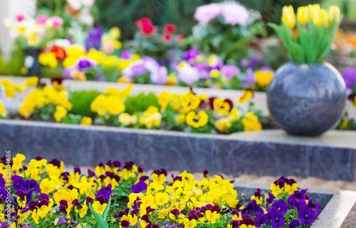 Foto op Canvas Begraafplaats Frühling auf dem Friedhof