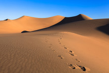 Footprints On The Hot Sand In The Desert