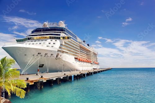 Luxury Cruise Ship in Port