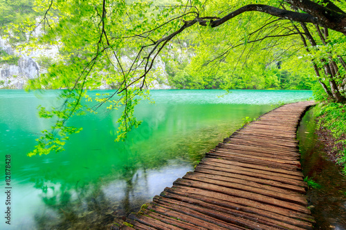 Naklejka premium Drewniana ścieżka w Parku Narodowym w Plitvice