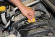 car mechanic repairs a motor vehicle