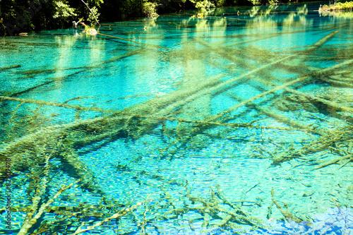 Spoed Foto op Canvas Groene koraal 夏の九寨溝