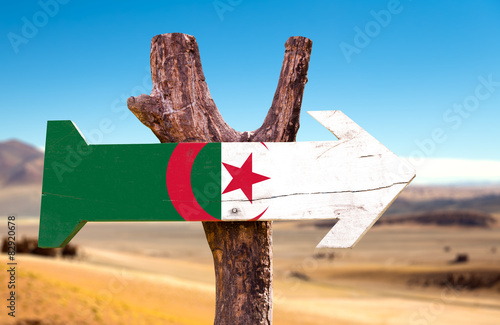 Foto auf Leinwand Algerien Algeria Flag wooden sign with dry background