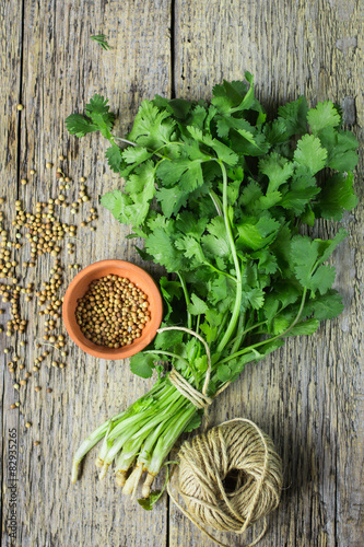 Fototapeta Bunch fresh cilantro and coriander seeds obraz