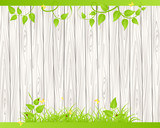 Wood fence  with grass