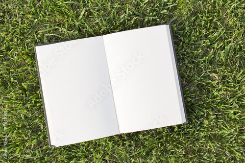 Fotografie, Obraz  Libro vuoto su erba