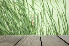 Defocus And Blur Image Of Terrace Wood And Green Forest Near Ter