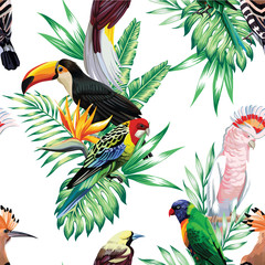 Tapeta tropical birds and palm leaves pattern