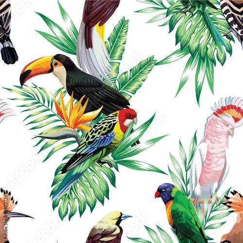 tropikalne-ptaki-na-galazkach