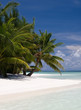 Paradise in the Indian Ocean, Maldives