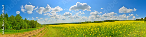 Montage in der Fensternische Landschappen Spring flower field