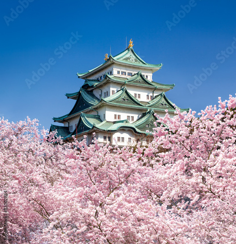 Foto auf Leinwand Schloss Nagoya Schloss in Japan