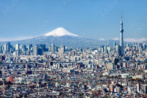 Tokyo Skyline mit Mount Fuji und Skytree Wallpaper Mural