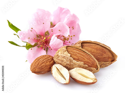 Almonds with flowers плакат