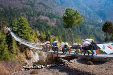 Yak On The Bridge Near Everest...
