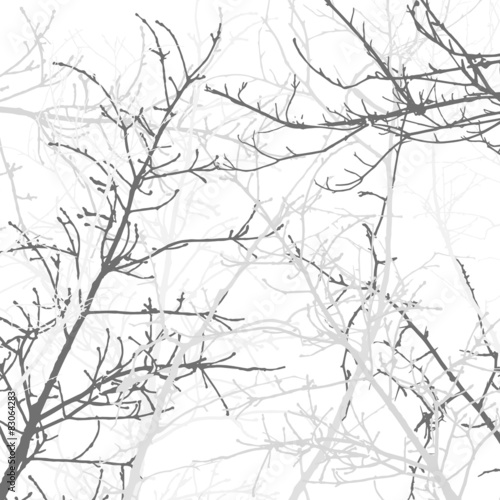 Láminas  Tree Branches Background Pattern. Vector illustration.