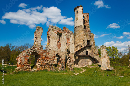 Foto op Canvas Rudnes The ruins of the castle Zviretice.